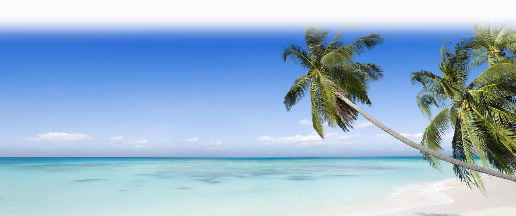 Great tropical vacation getaways can be booked with Wetzstein Travel of Bismarck, North Dakota.